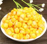 甜玉米厂家出售速冻甜玉米粒香甜可口