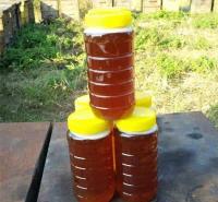 野生蜂蜜 优良好蜂蜜 浙江蜂蜜批发