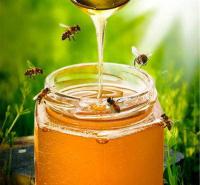 江苏土蜂蜜 欢迎咨询订购 土蜂蜜 蜂蜜供应