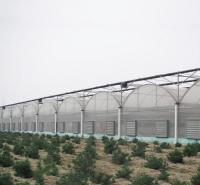千汇温室 薄膜大棚建造 连栋温室_温室大棚建设