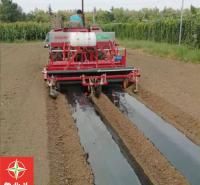 蔬菜起垄铺膜机 洋葱起垄铺膜机打孔定植机生产厂家 雪豹农业机械