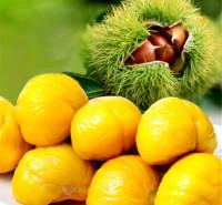 板栗果 绿色健康 便捷
