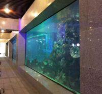 厂家定制PMMA透明亚克力鱼缸 亚克力水族工程项目 可定制尺寸