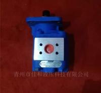 泊姆克 齿轮泵  1121001492  P124A085KYZA07-54   佳和液压