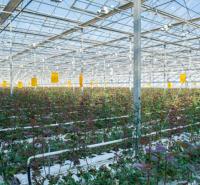 立体玻璃温室展示 阳光照射均匀