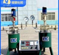 禄昊化机-高压反应釜-控制精度高
