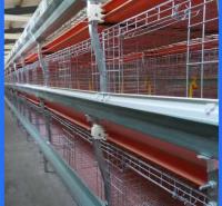 多层养殖鸡笼 鸡舍养殖设备 成品鸡笼 经久耐用易管理