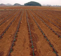金海雨滴灌带厂家生产的贴片式滴灌带 节水效果好