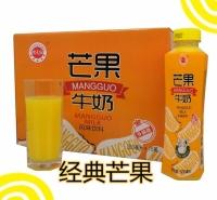 金登河芒果牛奶500ml厂家直发,质优价廉,口感纯正