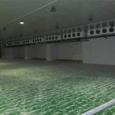 郑州冷库精选厂家 冰之星保鲜冷库 能耗低 制冷效果好