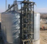 大型钢板仓  定制钢板仓  粉煤灰钢板库