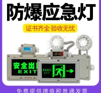 充电LED超亮指示消防加油站BCJ停电标应急灯