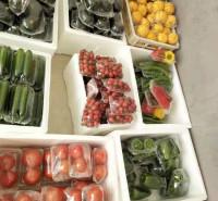 常年供应蔬菜礼盒 新鲜蔬菜套盒  无公害蔬菜礼盒 基地直供