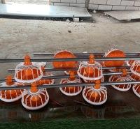 自动喂料加密料线养殖设备平养料线自动上料富博晟业双防栖线
