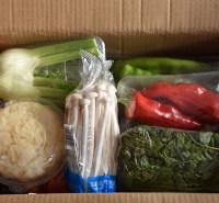 无公害蔬菜礼盒新鲜蔬菜 套菜礼盒   基地直供
