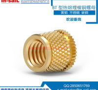 In-saiL 黄铜不锈钢注塑螺母 注塑铜嵌件预埋铜螺母 不锈钢碳钢注塑镶件 支持定制