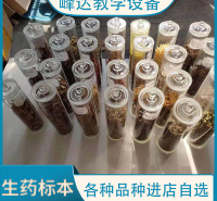 峰达厂家专业加工  生药标本 中药标本 中草药标本  可以现场加工标本 需要联系联系冯经理