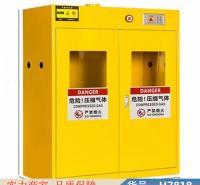 智众实验安全柜 储气瓶 实验室气瓶柜货号H7818