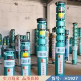 慧采井潜水泵 家潜水泵 过滤潜水泵货号H1927