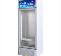 两门低温柜商用展示柜 立式冷柜 保鲜陈列柜 肉类海鲜熟食雪糕冰棍大容量冷冻冰柜