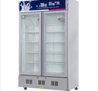 低温冷冻展示柜 冰淇淋冷柜 肉品冷冻冰柜 超市饮料柜大容积冷柜 单双门冷藏展示柜