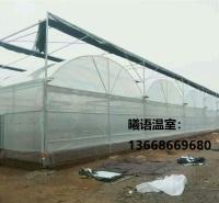 承接各种温室大棚 玻璃智能温室定制 薄膜温室 智能玻璃薄膜 温室大棚建造曦语温室
