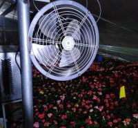 养殖温室安装环流风机作用  育苗大棚环流风机通风
