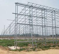 日光温室建设 厂家承建日光温室大棚  日光温室工程报价