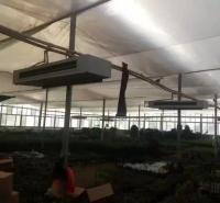 温室大棚育苗取暖加温设备厂家价格   天汇泰达