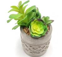 仿真植物 东莞定制多肉盆栽 DIY组合仿真绿色小盆栽摆件