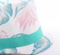 南宁专业加工沙滩帽质量保证
