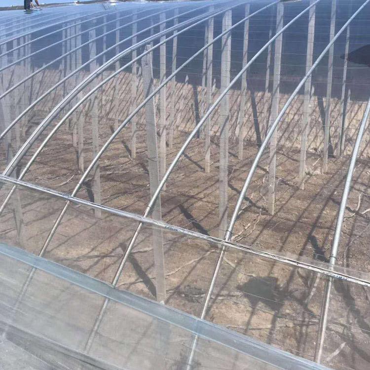 山东大棚膜草莓专用膜地膜厂家