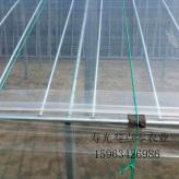 棚膜 葡萄专用膜 农业棚膜 温室大棚专用膜