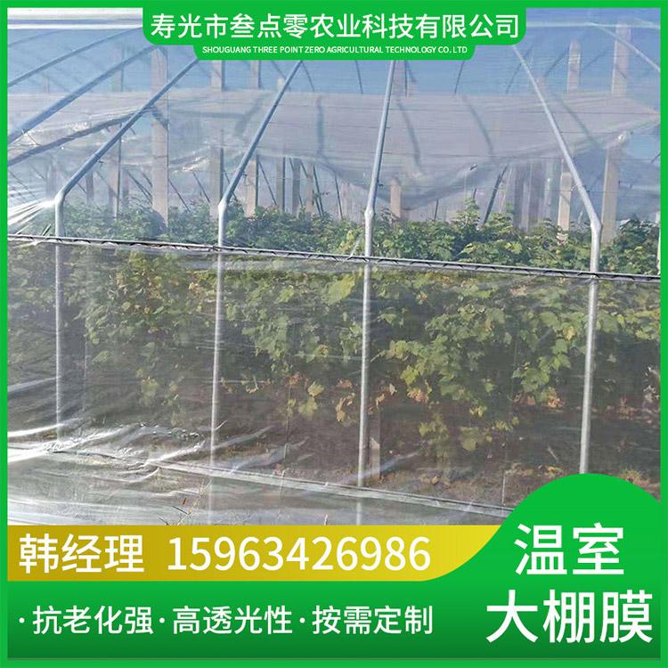 山东西红柿专用膜PO膜厂家