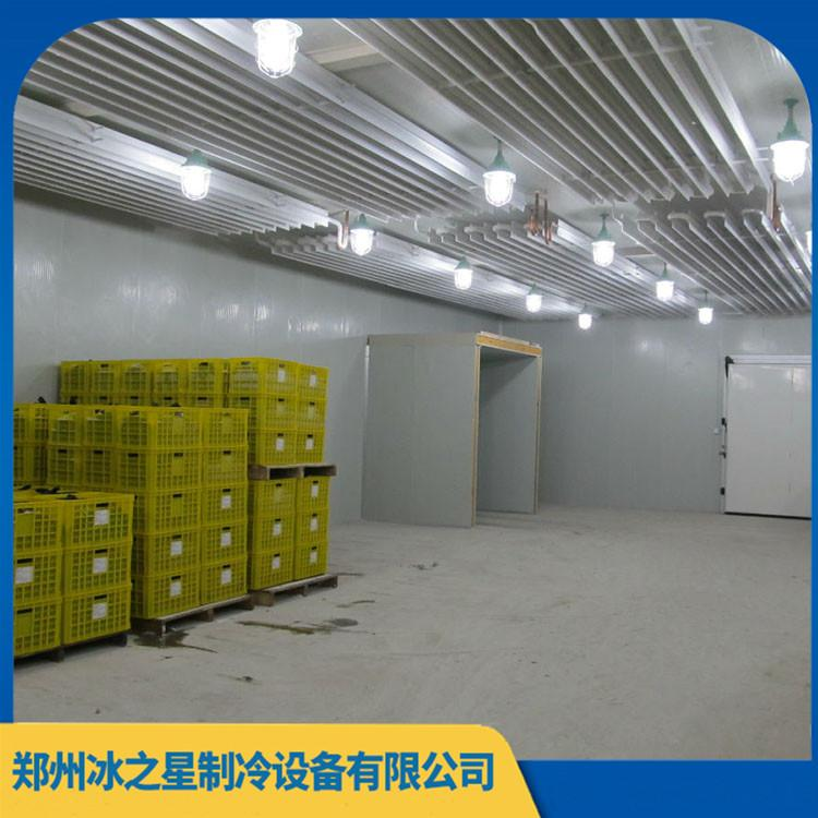 加工定制立式速冻设备 现货气调保鲜库 超长售后 保修5年