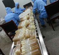 菌厂直供人工种植羊肚菌菌种原种栽培种优选六妹系列产量高