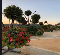 垂钓花球 景观花柱广场旅游景点摆放绿色雕塑 桥梁美化花盆