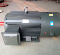 三相异步电动机 变频调速电机 变频电机 YTSP电机 衡水永动