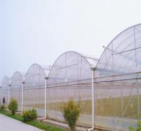 广西蔬菜大棚建设 连栋薄膜温室厂家 连栋温室造价齐阳承建