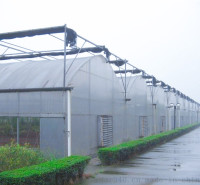 四川攀枝花新型连栋薄膜温室报价 齐阳温室承建