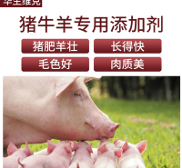 羊用饲料添加剂 鸡鸭促生长饲料 长得好 消化快