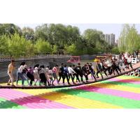 盛景网红桥 网红桥  网红桥厂家  厂家直销  品质保证