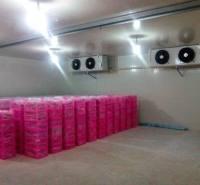 冷冻库供应 厂家 出售 小型冷冻库