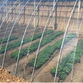 大棚PO膜 农用PO膜定制生产 量大优惠