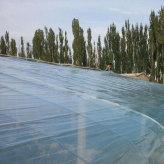 山东厂家供应双防农膜 双防膜生产加工 可定制 欢迎选购