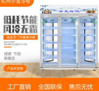 前后开门饮料冷藏展示柜立式玻璃门酒水冰箱商用定制杭州小雪冷柜