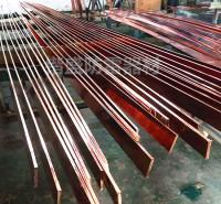 贵阳 垃圾焚烧发电厂防雷接地用铜包钢接地线 镀铜接地扁线 接地铜包钢扁钢